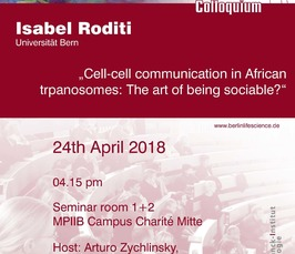 BLSC - Cell-cell communication in African trypanosomes: the art of being sociable?