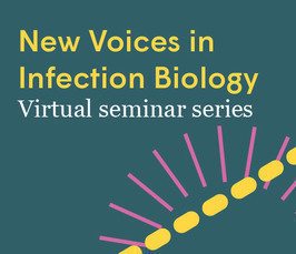 Sex determination in malaria parasites | New Voices in Infection Biology
